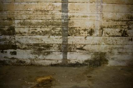 exterior-basement-waterproofing